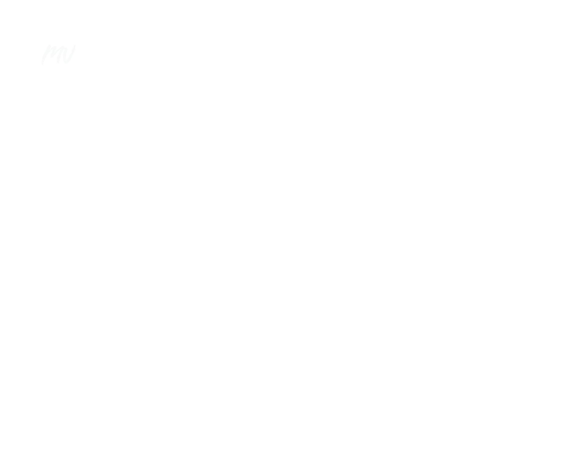 pieni logo mv