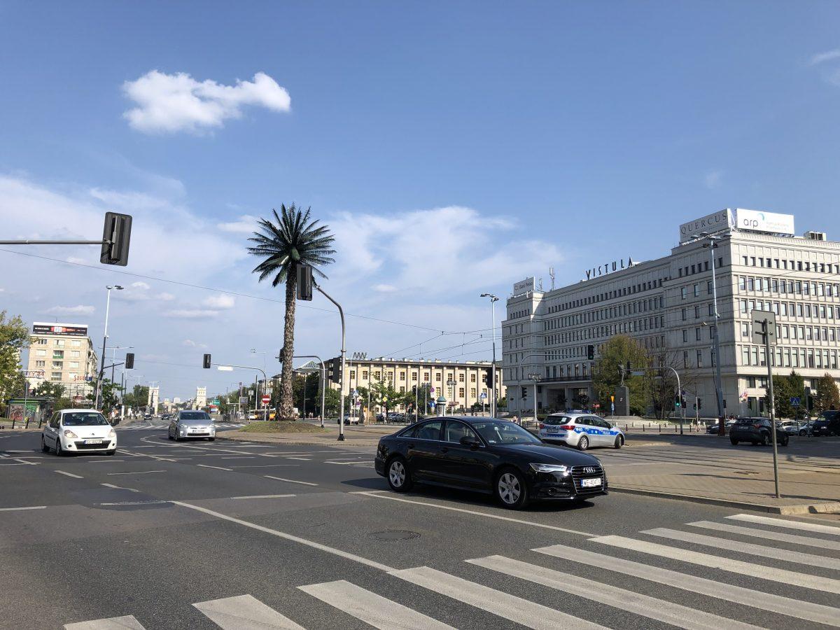 VAlokuvia varsovasta palmu