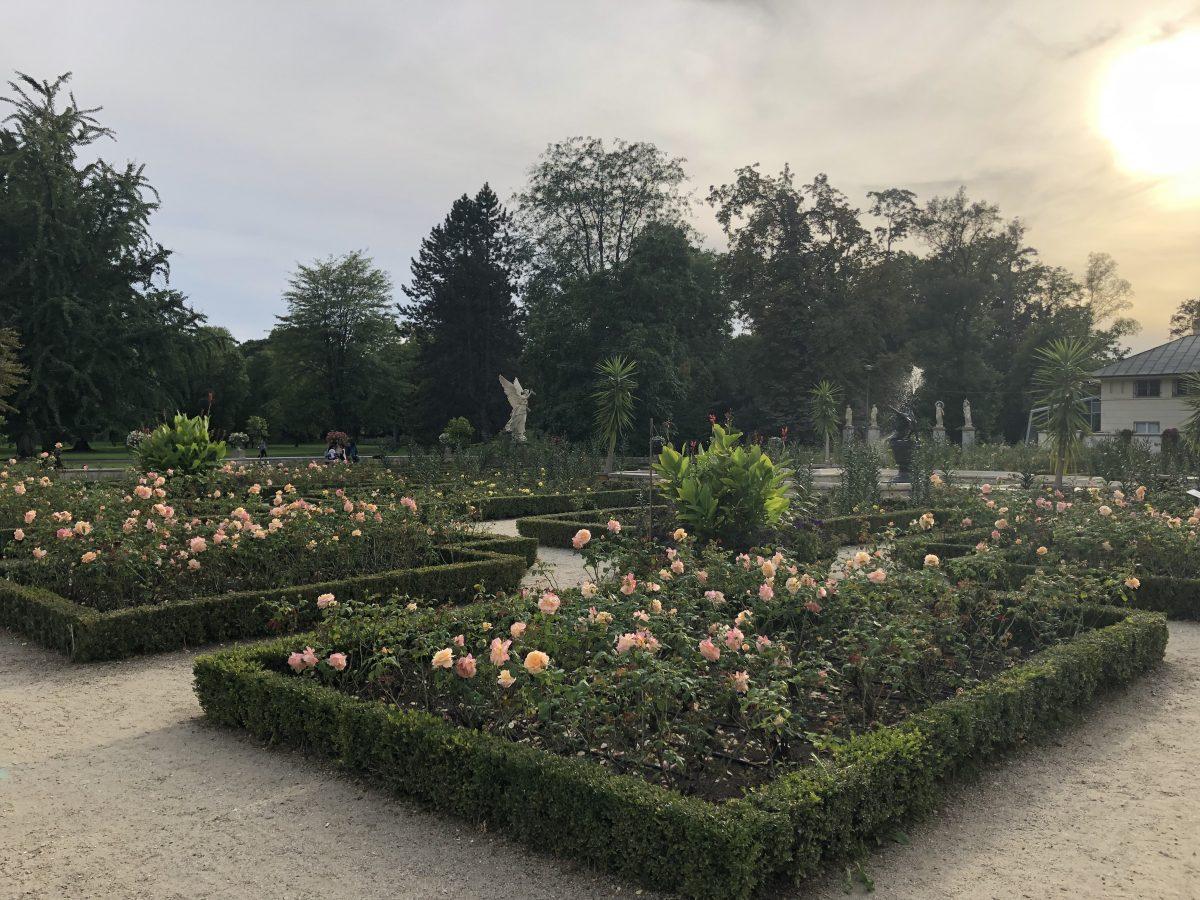 palatsin puisto