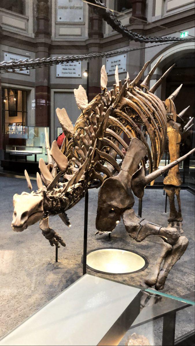 Dinosaurus berliini