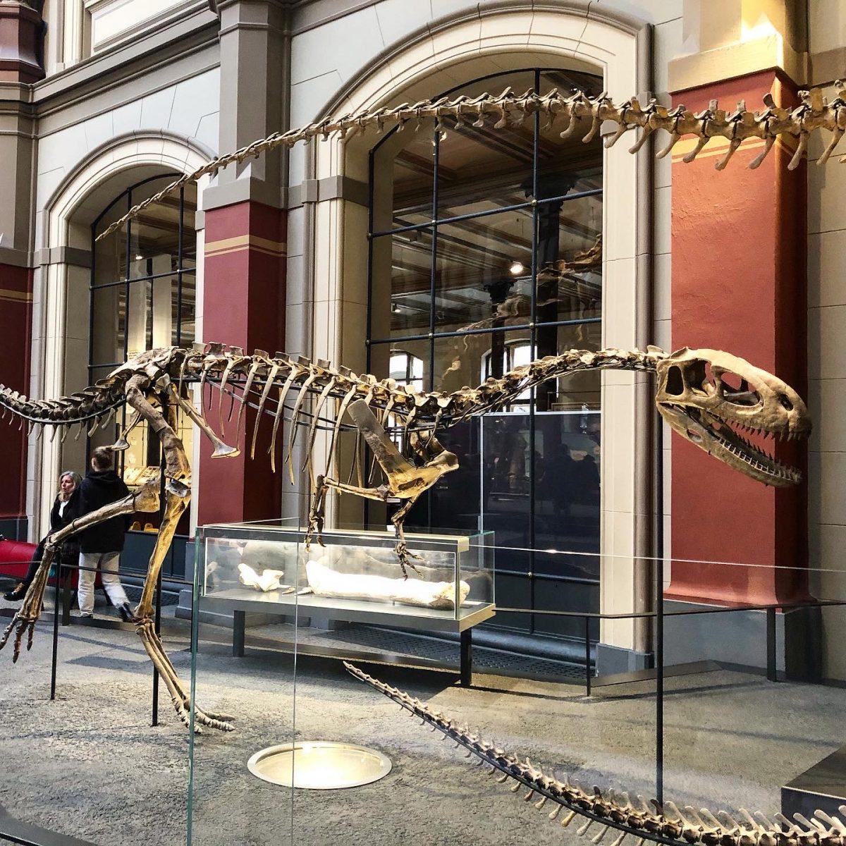 Berlin dinosaur