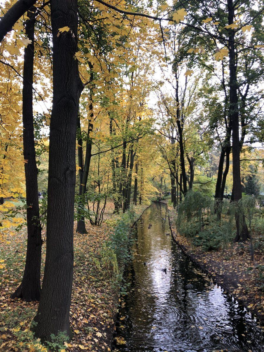 Łazienki Park syksy