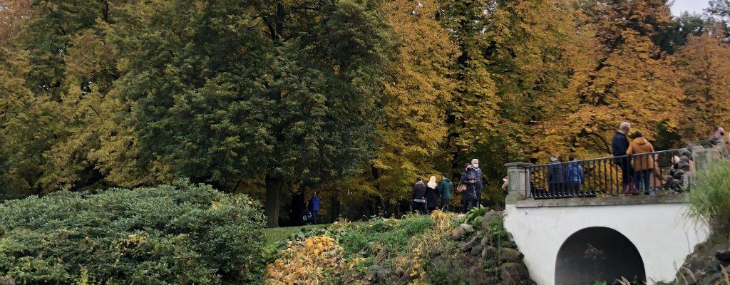 syksyinen puisto